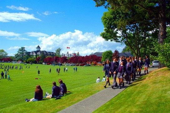 tiện ích trường học quốc tế swanpark